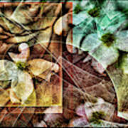 Dogwood Abstract Poster