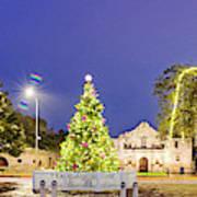 Early Morning Panorama Of Christmas Tree And Lights At The Alamo Mission - San Antonio Texas Poster