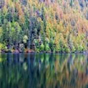 Echo Lake Autumn Shore Poster
