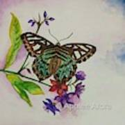 Enchanting Butterfly Poster