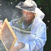 Experienced Senior Beekeeper Making Poster
