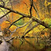 Fall Scene Poster