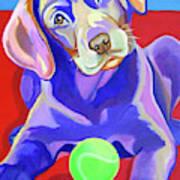 First Tennis Ball Poster