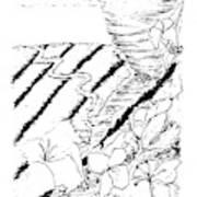Flower Farmers Tornado Paint My Sketch Poster