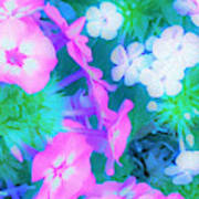 Garden Flowers In Pink, Green And Blue Poster