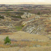 Golden Dakota Prairie Reverie Poster
