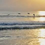 Golden Daybreak Poster