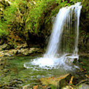 Grotto Falls On Trillium Gap Trail In Smoky Mountains National Park Poster