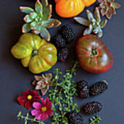 Heirloom Tomatoes With Herbs, Berries Poster
