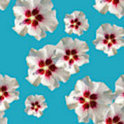 Hibiscus Flower Pattern Poster