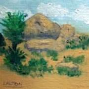 High Desert Rock Garden Poster