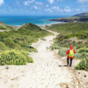 Hiking To Sandfly Bay New Zealand Poster