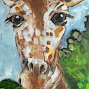 Hobbes Giraffe Poster