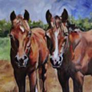 Horse Art  Poster