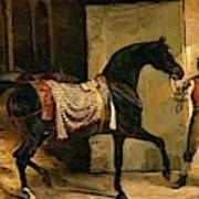 Horse Leaving A Stable Poster