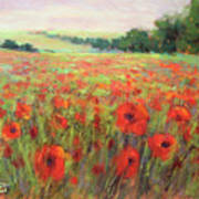 I Dream Of Poppies Poster