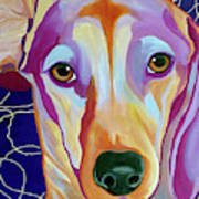 I Should Have Been Jackson Pollock's Dog Poster
