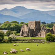 Idyllic Irish Landscape Poster