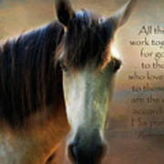 If Horses Could Talk - Verse Poster