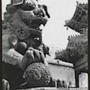 Imperial Lion  Beijing    Poster