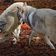 Joyful Wolves Poster