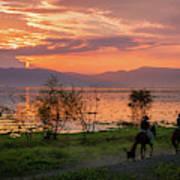 Lake Chapala Sunset And Horses Poster
