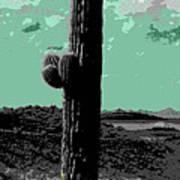 Lake Pleasant Az 044a Poster