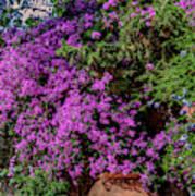Lavender River Poster