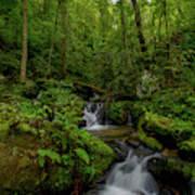 Lee Falls Cascades Poster