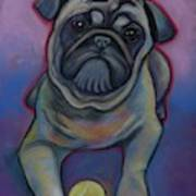 Lets Play Pug  Poster
