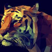 Low Poly Design. Tiger Illustration Poster