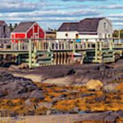 Low Tide At Blue Rocks 05 Poster