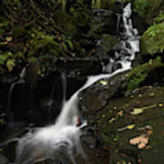 Lumsdale Falls 9.0 Poster
