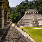 Mayan Ruins In Palenque, Chiapas Poster