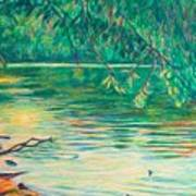 Mid-spring On The New River Poster