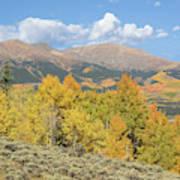 Mt. Elbert Autumn Poster