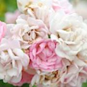 Natures Wedding Bouquet Poster