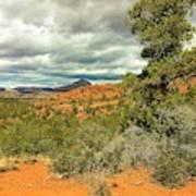 Oak Creek Baldwin Trail Blue Sky Clouds Red Rocks Scrub Vegetation Tree 0249 Poster