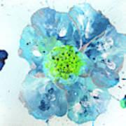 Oceanbreeze Blue-green Windflower Poster