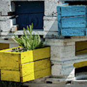 Old Pallet Painted White, Blue And Yellow Used As Flower Pot Poster