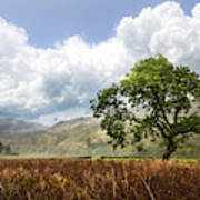 Old Scottish Farmlands Under The Clouds Poster
