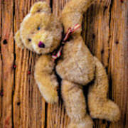 Old Teddy Bear Hanging On The Door Poster