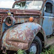 Old Vintage Blue Pickup Truck Among The Weeds Poster