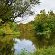 Painted Fall On The Back Pond Poster