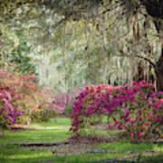 Paintely Garden Poster
