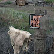 Palouse Barn 9916 Poster
