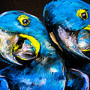 Pastel Painting Of A Blue Parrots On A Poster