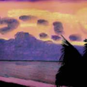 Pastel Palm Tree Sunrise Poster