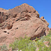 Phoenix Arizona Papago Park  Blue Sky Red Rocks Scrub Vegetation Yellow Flowers 3182019 5340 Poster