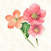 Pink And Orange Flowers On Subtle Cream Marble Poster